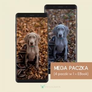 Presety Adobe Lightroom Mobile dla Ciebie i psa, pupila by Piesografia x Dog's Profit